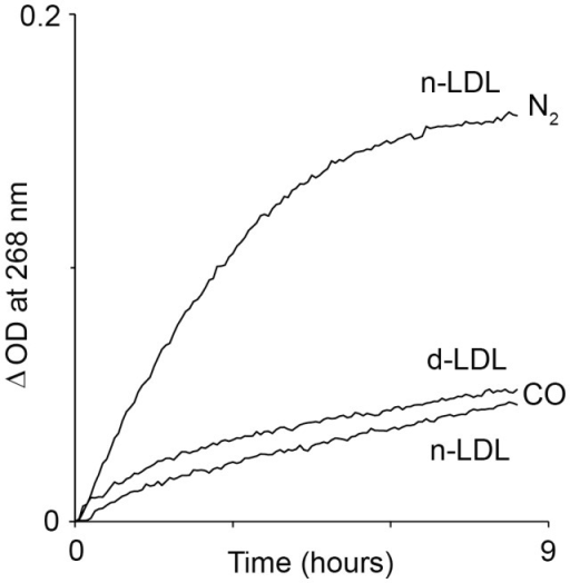CO attenuates Hb-induced LDL oxidation.LDL oxidation kinetics was traced in reaction mixtures containing ferric-Hb (3 µM), nLDL or dLDL (100 µg protein/ml) and H2O2 (3 µM) at anaerobic conditions of N2 or CO. Protein oxidation was followed by formation of conjugated dienes. Reactions rate is shown as ΔOD since the proteins (LDL and Hb) contribute to light absorption in UV region (ΔOD = OD(tx)−OD(t0) ). A representative result of 3 independent experiments is shown.