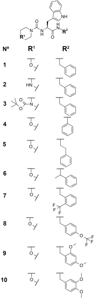 Chemical structures of the 10 peptidomimetic compounds synthesized and tested in this work.Compound 1 is the hit from the virtual screening from which derivatives 2–10 were designed.