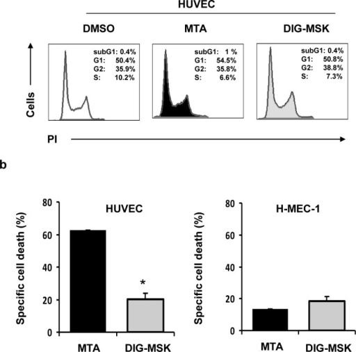 Cell cycle distribution and pro-apoptotic effect on microvascular endothelial cells upon exposure to MTA and DIG-MSK.a) HUVEC and HMEC-1 cells treated with MTA (200 nM) or DIG-MSK (200 nM) or DMSO were stained with propidium iodide (PI) and the cell cycle distribution was analyzed by flow cytometry. A representative cytometric profile of HUVEC cells is shown. b) Cell death was analyzed by flow cytometry in ECs (HUVEC and HMEC-1 cells) treated with 200 nM MTA, DIG-MSK or in untreated cells after staining them with Annexin-V and 7-AAD. The bars represent the mean ± SEM of the specific cell death. At least three independent experiments were analyzed (*p<0.05; Mann-Whitney U test).