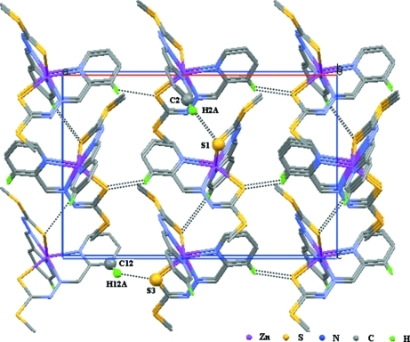 A view of the three-dimensional molecular network parallel to (010), formed by weak intermolecular C—H···S hydrogen bonds (dotted lines). Hydrogen atoms not involved in hydrogen bonds have been omitted.