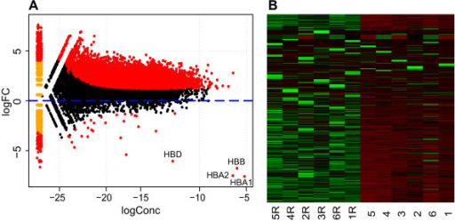 Differential expression of non-globin reduced versus globin reduced whole blood samples. A. MA-plot (log concentration on x-axis, log fold-change on y-axis) showing that the majority of differentially expressed genes (P value < 0.01, indicated in red) are up-regulated while the 4 globin genes showed the strongest reduction. Genes with zero expression in one of the groups are shown on the left end of the plot. HBD: hemoglobin delta, HBB: hemoglobin beta, HBA1: hemoglobin alpha 1, HBA1: hemoglobin alpha 2. CXorf25 has a logConc of -18.79 and a logFC of -14.3 and is not shown on this graph. B. Heatmap of normalised expression values of 21633 genes across the 6 non reduced and 6 reduced (R) samples where green depicts high expression and red low expression values.