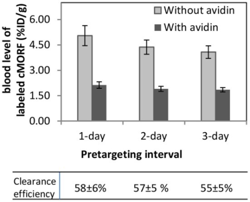 Clearance efficiency at different pretargeting intervals in a pretargeting procedure using biotin-CC49-MORF, avidin, and 99 mTc-cMORF. The cMORF level is proportional to and used as a measure of the antibody level. The clearance efficiency is defined as the ratio of blood level with/without avidin.