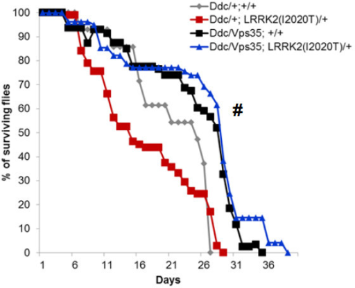 Overexpression of Vps35 in DA neurons rescues the shortened lifespan of LRRK2(I2020T) flies. N = 8-11 cohorts of ten per genotype. All flies were reared at 29°C. Statistical analysis: Two-Way ANOVA, Tukey's post-test. Statistically significant difference compared to Ddc/+;LRRK2(I2020T)/+is denoted as # for P < 0.05.