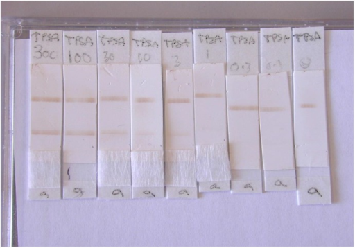 Photograph of the total PSA lateral flow assay.