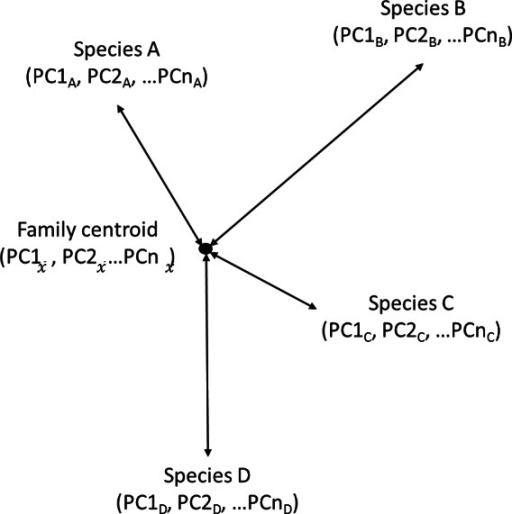 Calculating diversity as mean Euclidean distance to Family centroid.Estimating morphological diversity as the mean Euclidean distance between each species and the family centroid. Every species had scores on the principal components (PC) axes that accounted for 95% of the variation in the principal components analysis. The number of axes (PCn) varied for each analysis but they were the same within a single analysis. PC scores were used to calculate the Euclidean distance from each species to the family centroid (average PC scores for the entire family). Morphological diversity of the family is the average value of these Euclidean distances.