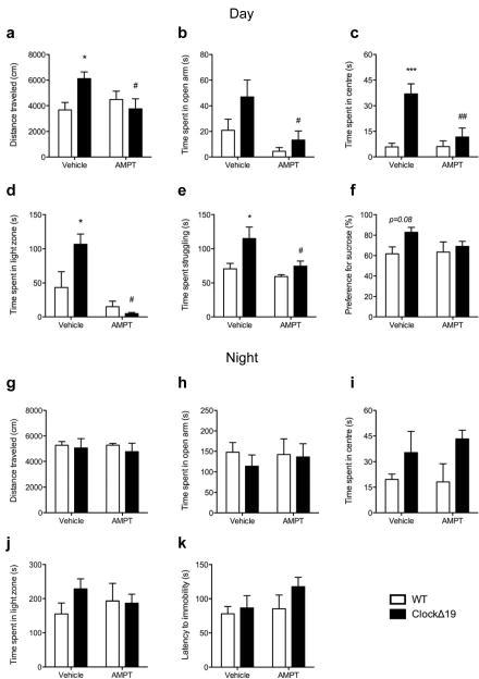 Daytime-specific tyrosine hydroxylase inhibition reverses manic-like behavioursClockΔ19 mice and wild-type (WT) littermates received an intraperitoneal injection of either 0.9% saline (vehicle) or AMPT (100mg/kg) during the day (ZT 6-10) or night (ZT 18-22) and were tested for anxiety- and depressive-related behaviours 60–90 min later. Daytime cohorts (a–f): (a) Two-way ANOVA revealed a significant interaction of genotype and treatment (F1,20=6.66, p=0.01) on distance traveled in a novel environment where vehicle-treated ClockΔ19 mice exhibited hyperactivity (p<0.05) which decreased to WT levels following AMPT treatment (p<0.05). Vehicle-treated ClockΔ19 mice also showed the expected decrease in anxiety-like behaviour compared to vehicle-treated WT littermates as indicated by increased exploration of the anxiogenic (b) open arms of the elevated plus maze (main effect of genotype: F1,20=5.09, p=0.03), (c) centre of the open field (main effect of genotype: F1,15=16.22, p=0.001; post-hoc p<0.001), and (d) light chamber of the light/dark box (interaction between genotype and treatment: F1,15=6.12, p=0.03; post-hoc p<0.05 for vehicle treated groups) and displayed (e, f) decreased depressive-like behaviour in the forced swim test (e) as indicated by increased time spent struggling (F1,16=8.73, p=0.009; post-hoc p<0.05) and an increased preference for sucrose (f) in the sucrose preference test (genotype effect:F1,25=3.24, p=0.08). Importantly, AMPT treatment significantly reversed ClockΔ19 mice manic-behavioural features to WT levels (a–e). Main effect of treatment in (a) reported above; (b) F1,20=10.48, p=0.004, post-hoc p<0.05; (c) F1,15=7.6, p=0.01, post-hoc p<0.001; (d) F1,15=19.18, p=0.0005, post-hoc p<0.001; (e) F1,16=6.55, p=0.02, post-hoc p<0.05. (g–k) Night time cohorts. Vehicle-treated ClockΔ19 mice did not exhibit manic-related behavioural features when tested at night, nor did AMPT treatment effect behaviour in ClockΔ19 mice or WT littermates. Daytime cohorts, n=5–6/group; Daytime sucrose preference test and night time light/dark test, n=7/8; Night time cohorts, n=5–8/group.