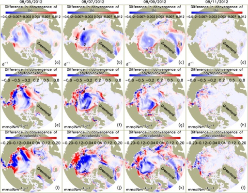 Simulated difference in the convergence of (a–d) ocean velocity Uo, (e–h) phytoplankton, and (i–l) zooplankton in the upper 100 m of the Arctic Ocean between the CNTL and SENS runs over the period 5–11 August 2012, where u is ocean velocity vector, P and Z are phytoplankton and zooplankton concentrations, and z is depth. The CTNL-simulated convergence fields of these variables are generally close to the difference fields in magnitude and spatial pattern and are therefore not shown.
