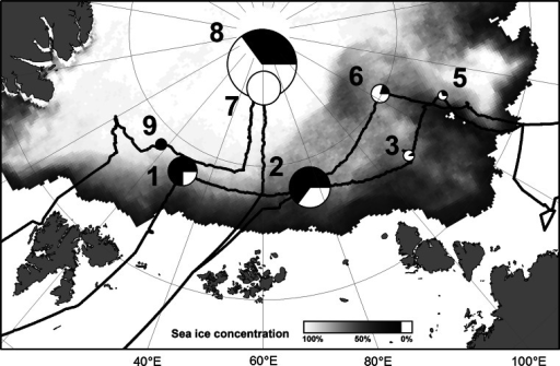 Map of the IceArc expedition cruise track and positions of ice stations where under-ice algal aggregates were observed with the ROV. The size of the circles represents relative aggregate abundance (see Table 3 for absolute values), while the fraction of the two aggregate types as determined from mean aggregate eccentricity is depicted by the pie charts. White color stands for the fraction of elongated aggregates, while black depicts the fraction of rounded aggregates. Mean sea ice concentration during the cruise period is shown in the background