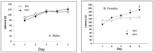 (A,B) Rotarod. B6N males showed a greater percent increase in the latency to falling from Day 1 to Day 5 of testing compared with B6J males, and there was a significant effect of day (F4,144 = 12.75; p < 0.0001). B6N female mice also showed a greater percent improvement in the latency to falling over the five days of testing and significantly longer latencies to falling on Days 4 and 5. * p < 0.05, ** p < 0.01. Data are the least square means ± S.E.M.
