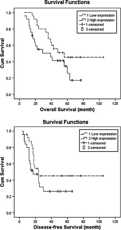 Overall and disease-free survivals of the patients with HES1 low-expression and high-expression. Overall survival period of patients with HES1 low-expression was significantly longer than that of those with high-expression (χ2 = 4.049, P = 0.044)