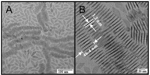 "TEMs of GdF3 nanocrystals. (A) Overview graph of single nanocrystals and ""stacks"". (B) Blow-up of self-assembled nanocrystals."