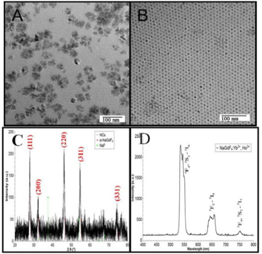 TEMs of NaGdF4:Yb, Ho nanocrystals. (A) Five times standard concentration; (B) 25% standard concentration; (C) XRD pattern of NaGdF4:Yb, Ho nanocrystals; (D) Upconversion spectrum of NaGdF4:Yb, Ho nanocrystals under excitation of 980 nm.