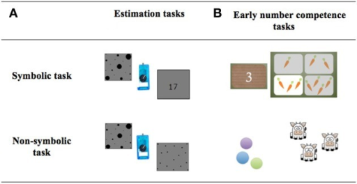 Symbolic and non-symbolic tasks in the (A) estimation and (B) the early number competence tasks.