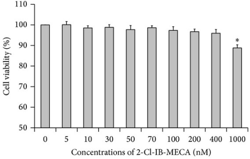 Cell survival rate at various concentrations of 2-Cl-IB-MECA. HT-29 cells were treated with various concentrations of 2-Cl-IB-MECA (5 nM to 1000 nM) for 12 hours, before cell viability was measured by using a CCK-8 assay. Compared with the NC group, the cell viability of each group showed no significant difference (P > 0.05), except for the 1000 nM group (*P < 0.05). Data are shown as the mean ± SD from three independent experiments.