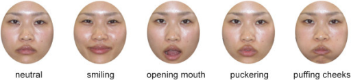 Example of face stimuli. These images contain the following facial gestures: neutral, smiling, opening mouth, puckering, and puffing cheeks. (The individual provided written informed consent for publication of these images.).