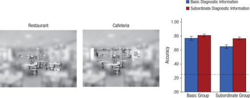 Paradigm and results from the validation experiment. Participants were asked to categorize individual scenes, but unlike in the gaze-contingent experiment, each scene contained objects identified as diagnostic at either the basic level (example shown on left) or subordinate level (example shown in middle). These objects were revealed at full resolution while the rest of the scene was low-pass filtered. The graph shows mean accuracy as a function of condition and the type of diagnostic information presented. The dashed line indicates chance performance. Error bars represent ±1 SE.
