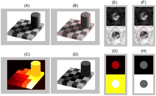 Two examples of image segmentations used to guide the computation of region luminance and contrast.(A) Adelson checkerboard image [1], modified with permission under the Creative Commons Attribution License. (B) Segmentation computed with a standard computer vision algorithm [84] (parameters: , ). (C) The algorithm returns region labels for each image region. (D) Region labels enable the calculation of mean pixel or luminance values within each segmented region. (E-H) Same as above, except applied to a simple version of the Anderson-Winawer display (adapted from http://www.psy.ritsumei.ac.jp/~akitaoka/AIC2009.html with permission).