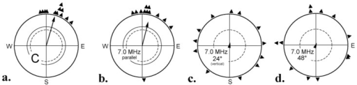 Testing robins with radio frequency fields of 7 MHz, 470 nT, added in different alignments with respect to the vector of the local geomagnetic field. (a) Control: geomagnetic field only; (b) radio frequency field added parallel to the magnetic vector, that is 24° to the downward direction; (c) added vertically, 24° to the magnetic vector; (d) added 48° to the magnetic vector, which means 24° to the downward direction—Symbols as in Figure 1b (data from [44]).