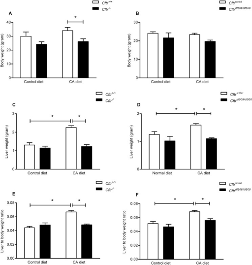 Hepatic Cyp7a1 mRNA expression Cftr knockout mice (Cftr-/-) and controls, fed a control diet or a cholic acid (CA) containing diet for 3 weeks.Hepatic Cyp7a1 mRNA expression after a control (A) or 0.5%-CA (wt/wt) chow diet (B) for three weeks. Cyp7a1 mRNA levels were normalized to a housekeeping gene (β-actin) in Cftr knockout mice (Cftr-/-) and control littermates (Cftr+/+). Data are presented as means ± SEM of N = 5–7 mice per group. *P-value<0.05.
