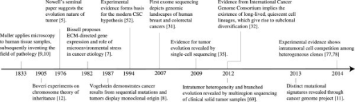 Timeline of the evolving concepts of tumor heterogeneity.