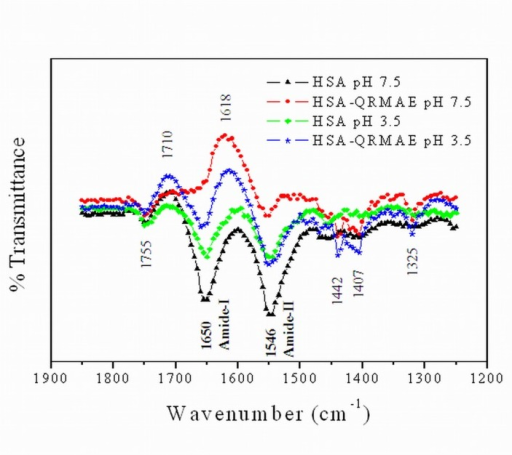 FT-IR spectra are showing Amide I and Amide II bands in the region of 1850–1250 cm-1 difference spectra of HSA in the absence and presence of QRMAE at pH below and above two unit of their pI.