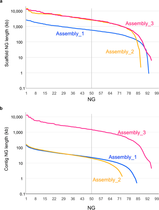 NG graphs of the three assemblies in scaffold length (a) and contig length (b). The y-axis indicates the calculated NG contig/scaffold length (NG1 through NG100, see text for detail) in each assembled genome. The vertical line indicates the NG50 contig/scaffold length.