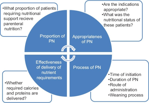 Framework for quality assessment of parenteral nutrition