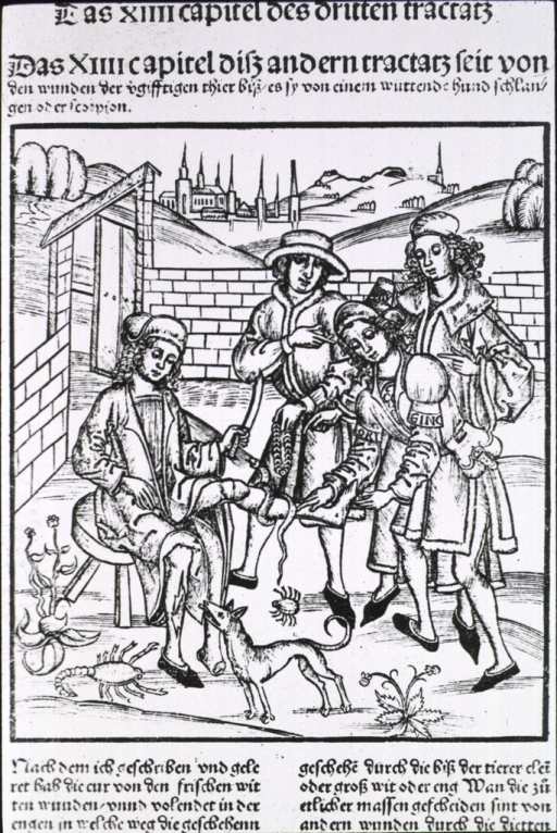 <p>Man sitting in courtyard with snake around leg, and other injurious animals grouped around.  Other leg torn.  Three attending.</p>