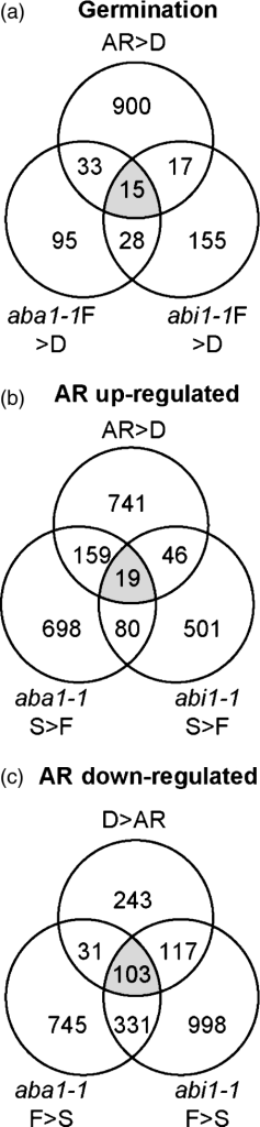 Venn diagram representations identifying after-ripening (AR)-regulated and AR-independent gene sets in 24-h imbibed seeds. Datasets are derived from Table S1; in each case '>' indicates the upregulated gene set in the comparison. In each case sets used for comparison are indicated next to associated circles. The numbers of genes represented in the gene sets are shown within the intersecting and non-intersecting segments of the sets. Gene lists for all comparisons are presented in Table S2a,b. In all cases AR and dormant (D) refer to datasets of Ler wild-type seeds. (a) Identification of a gene set associated solely with germination potential in imbibed seeds ('germination' upregulated). (b) Identification of a gene set associated solely with stored (S)/AR imbibed seeds. (c) Identification of a gene set associated solely with fresh (F)/non-AR (dormant) imbibed seeds. A box-plot analysis showing statistical data associated with the different gene groups is given in Figure S1.