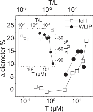 Effect of toxins on vesicle size as determined by dynamic light scattering: The treatment of phosphatidylcholine vesicle with tolaasin I (open square) and WLIP (close circle) caused changes in vesicle average size (Δ diameter) which was reported vs the toxin concentration (T), normalized to the vesicle diameter in the absence of toxin. Experiments were obtained at constant lipid concentration (80 μM). The toxin/lipid ratio (T/L) was reported in the upper scale of the same panel. Inset. In this case we analyzed the variation of the scattered light intensity (Δ ILS), normalized to the intensity value in the absence of toxin. Other parameters are as above.