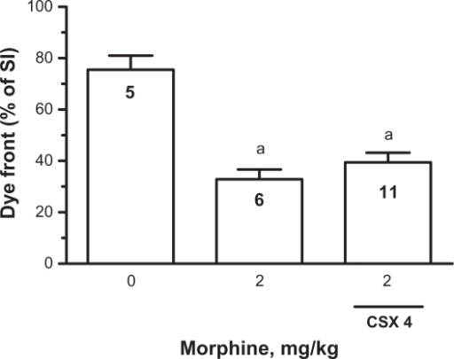 Effect of double gavage of CSX 4 on morphine inhibition of transit in the SI of the mouse. The dye front represents the percentage of the total length that the dye Poly R-478 has traveled along the length of the SI. The control group (no morphine) was gavaged with saline 20 minutes before the injection of saline subcutaneously, followed 20 minutes later by gavage of dye-containing saline. The morphine group was gavaged with saline 20 minutes before being injected subcutaneously with morphine (2 mg/kg), followed 20 minutes later by gavage of dye. The third group was gavaged with CSX 4 (50 mg/kg) 20 minutes before subcutaneous injection of morphine (2 mg/kg), followed 20 minutes later by gavage of dye containing CSX 4 (50 mg/kg). Total gut transit time was 45 minutes. Results are mean ± SEM, with the number of mice indicated within the bar. The morphine group and morphine group with CSX 4 were significantly different from the control group (a, ANOVA, P < 0.01). There was no significant difference between the morphine group and the morphine group with CSX 4.Abbreviations: ANOVA, analysis of variance; CSX 4, casoxin 4; SEM, standard error of the mean; SI, small intestine.