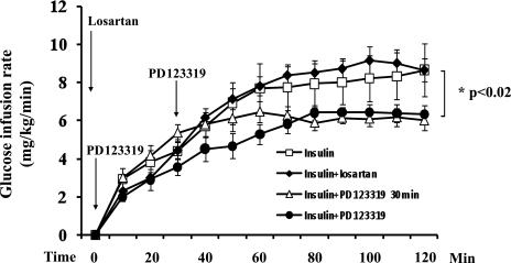 AT2R antagonism attenuates insulin-mediated whole-body glucose disposal. Each rat received 2 h of insulin infusion in the absence or presence of either PD123319 infusion (50 μg/kg/min, started at time −5 or 30 min) or losartan injection (0.3 mg/kg i.v. at time −5 min). n = 8–16. *P < 0.02 (ANOVA).