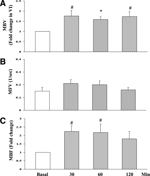 Insulin increases skeletal-muscle microvascular recruitment in rats. A: Changes in muscle MBV. P < 0.03 (ANOVA). B: Changes in muscle MFV. C: Changes in muscle MBF. P < 0.03 (ANOVA). n = 5–6. Compared with basal level, *P < 0.05 and #P < 0.01.