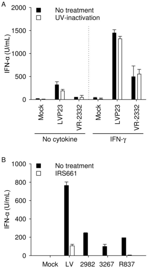 PRRSV sensing by pDC does not require live virus and is mediated via TLR7. (A) IFN-α induced by type 1 and 2 PRRSV (MOI of 1 TCID50/cell) in enriched pDC does not require live virus and is potentiated synergistically by IFN-γ. (B) Production of IFN-α by enriched pDC exposed to PRRSV (MOI of 2.5 TCID50/cell) is inhibited by IRS661, a TLR7 antagonist. IFN-α was determined by ELISA in supernatants harvested after 20 h. Bars indicate biological triplicates ± 1 standard deviation in one representative experiment out of two.