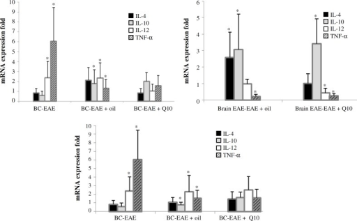 The expression of mRNA. Using REST software, the fold changes were increased in inflammatory genes of EAE mice as compared to anti-inflammatory genes in this group (*P<0.0.5). BC, brain control