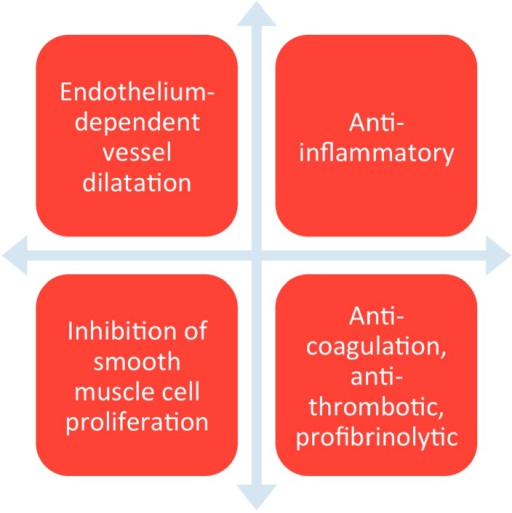Shows the different functions of endothelium.