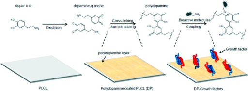 Illustration of method developed by Shin et al. [90] to coat PLCL film with PDAM, and mechanism of PDAM capture of VEGF onto the surface. Reproduced from [90] with permission from American Chemical Society, copyright 2012.