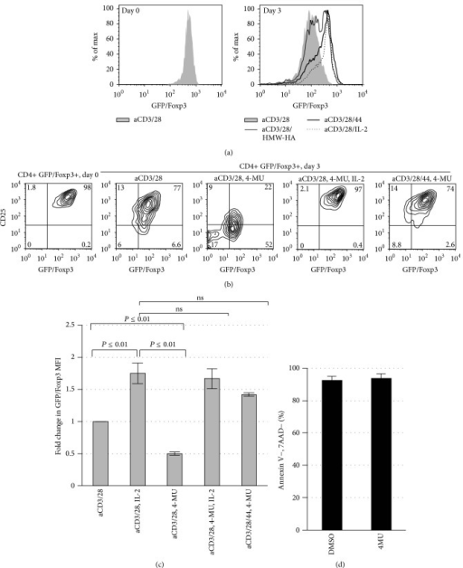Inhibition of HA synthesis impairs Treg homeostasis which can be overcome with exogenous IL-2 or CD44-cross-linking. (a) Representative histograms of GFP/FoxP3 expression of Treg following 3 days of culture in the presence of anti-CD3 and anti-CD28 alone or with IL-2, CD44 cross-linking, or exogenous plate-bound HA. N = 3 independent experiments. (b) Representative FACS plots illustrating GFP/Foxp3 and CD25 expression on Day 0 immediately following isolation of CD4+GFP/Foxp3+ Treg from murine splenocytes and following 3 days of culture with anti-CD3 and anti-CD28 Ab alone or in conjunction with plate-bound anti-CD44 Ab, the HA synthesis inhibitor 4-MU, and/or IL-2. (c) Fold change in GFP/Foxp3 MFI for the same conditions as in (b), here for N = 3 independent experiments. (d) Viability (the percentage of GFP/Foxp3+ cells negative for 7AAD and Annexin V) for Treg cultured in the setting of either DMSO or 4MU.