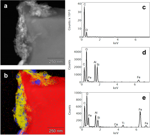 (a) HAADF image showing an organomineral layer (bright) coating an external surface of a biochar particle; (b) Phase map of (a) derived from x-ray microanalysis spectrum imaging, showing three distinct phases; Average EDS spectra of: (c) red (biochar) phase in (b) containing C and O only; (d) yellow (clay) phase in (b) containing mainly C, O, Al and Si; (e) blue (Fe-rich) phase in (b). Both mineral phases [(c,d)] have a considerable organic content.