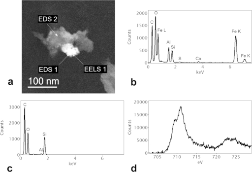 (a) STEM HAADF image of edge of biochar showing organomineral phase formed by reaction with soil; (b) EDS spectrum of Fe-rich mineral phase (EDS 1); (c) EDS spectrum of Si-rich phase (EDS 2); (d) Fe-L2,3 EELS spectrum (background stripped) at EELS 1 showing a pronounced low energy shoulder on the Fe-L3 edge at around 708 eV, characteristic of a mixed (Fe II–III) valence state such as found in magnetite.