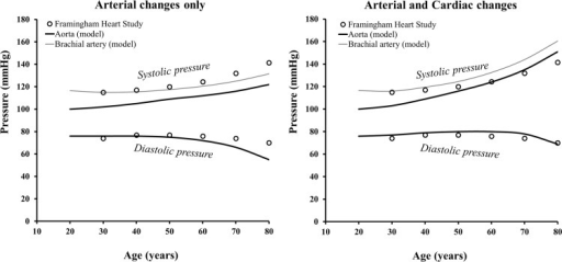 Comparison between the model's aortic systolic and diastolic pressures changes with age and population data for brachial pressure.(On the left) Simulations for arterial parameter changes only and (on the right) for arterial and cardiac parameter changes combined. Parameters for the arterial changes are prescribed, whereas parameters for the cardiac changes are computed through physiological rules. The thin grey line represents derived brachial systolic pressure, obtained accounting for the amplification between aortic and brachial systolic pressure based on data reported by Avolio et al. [23].