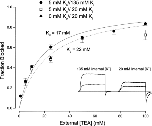 Interaction between external TEA and internal K+ ions. (Inset) Currents (at 0 mV) recorded with 135 mM (left) and 20 mM (right) internal K+ in the absence (larger current) and presence of 25 mM external TEA. (Main figure) Channel block (at 0 mV) at the indicated concentrations of external TEA in 135 mM (•) and 20 mM (□) internal K+. Block by 25 mM TEA was measured (▴) with 20 mM internal K+ and a nominally 0 K+ external solution (see methods).