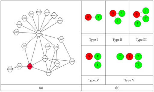 The structures of the PPI network for the simulation study. (a) An overall PPI network for the simulation study. (b) Five types of target subnetworks. The red nodes represent the seeds. The five types of network structures in (b) are assumed to be target networks for the PPI network (a).