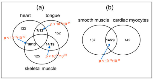 PMC2822763_1471 2164 11 49 5 overlapping tissue tf pairs and their functions between open i