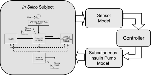 Principal component of the type 1 diabetes simulator: a model of the glucose-insulin system, a model of the sensor, a model of the insulin pump and subcutaneous insulin kinetics, and the controller to be tested.