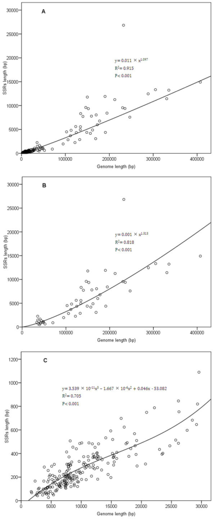 Regression analysis of relationship between SSRs length and genome size.