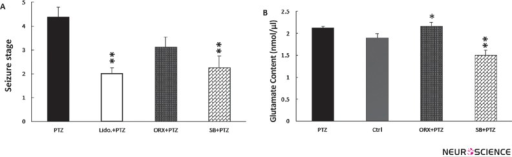 Orexin receptor (OX1R) modulation reduced convulsive intensity and altered hippocampal glutamate content. Single dose i.c.v infusion of OX1R antagonist (SB334867) (P < 0.01) and also single dose lidocaine administration (in LHA) (P < 0.05) reduced convulsive intensity (A). Orexin-A i.c.v infusion, increased (P < 0.05) hippocampal glutamate content, while blocking OX1R (SB334867) (P < 0.01) decreased that content compared to control.* P < 0.05; ** P < 0.01; PTZ, Pentylenetetrazol; Ctrl, Control; SB, SB334867; ORX, Orexin-A; Lido., lidocaine
