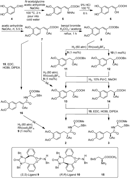 The synthesis of target diastereoisomers 2 and 3.