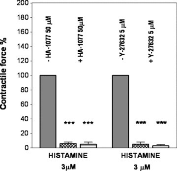 Effects of inhibition of ρ kinase by 50 μM HA-1077 (n = both 5) or 5 μM Y-27632 (n = both 4) on the histamine-induced contraction in rabbit saphenous vein (grid columns) and abdominal part of inferior vena cava (hatched columns). Contractile force is expressed in % of control. ***P < 0.001.