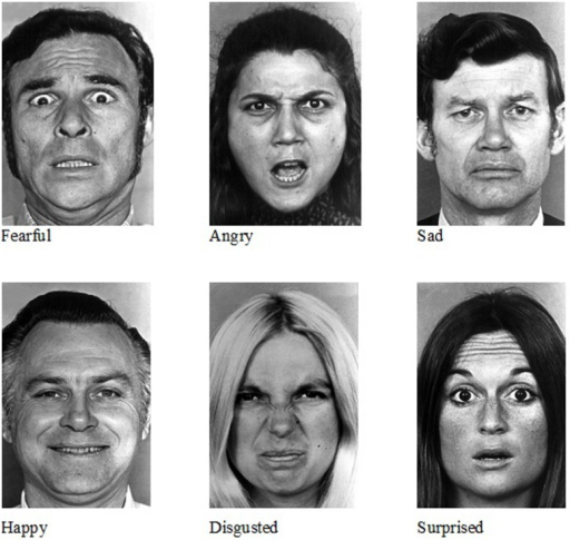 Ekman and friesen pictures of facial affect